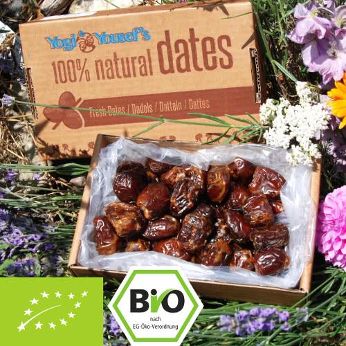 Bio Datteln - zart und angenehm süß - mit Stein