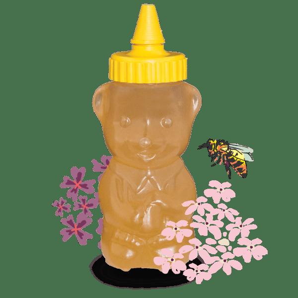 Akazienhonig im traditionellen Honigbär 250g