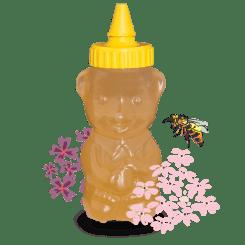 Akazienhonig im traditionellen Honigbär - 250 g 250g